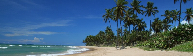 vacations in bahia holidays brazil