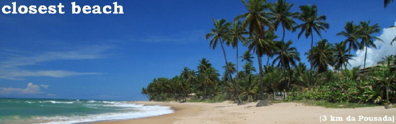 Bahia  Vacation  Tours Brazil Travel